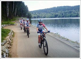 Cyklostezka a stezka pro in-line